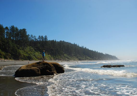 Kalaloch Beach Magic at Olympic National Park