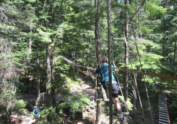 A Treetop Whistler Adventure in British Columbia