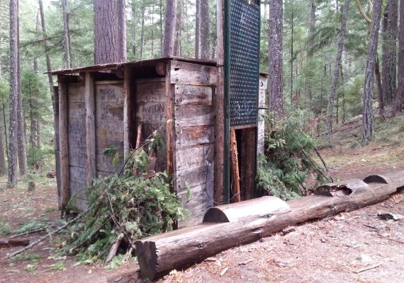 Kid-Friendly Hikes in Oregon: Looking for Bigfoot