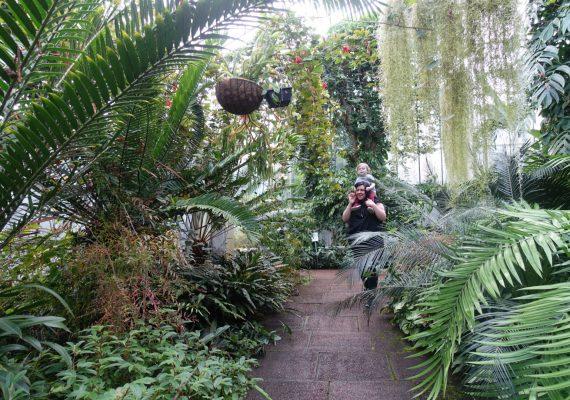 Green Fun at the Botanic Garden Edinburgh