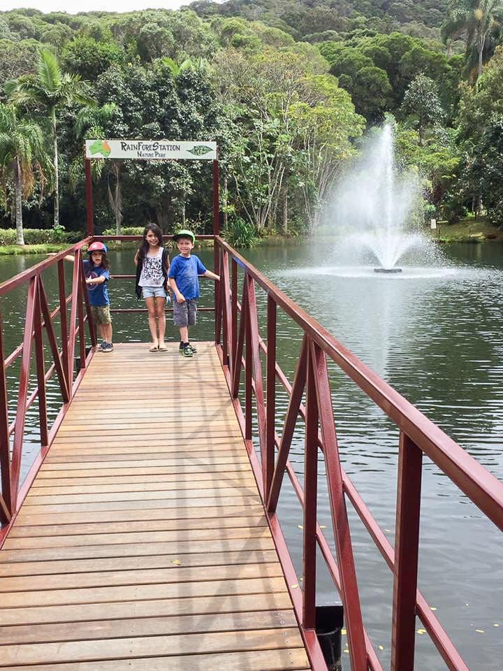 Australia for Kids: RainForeStation Nature Park
