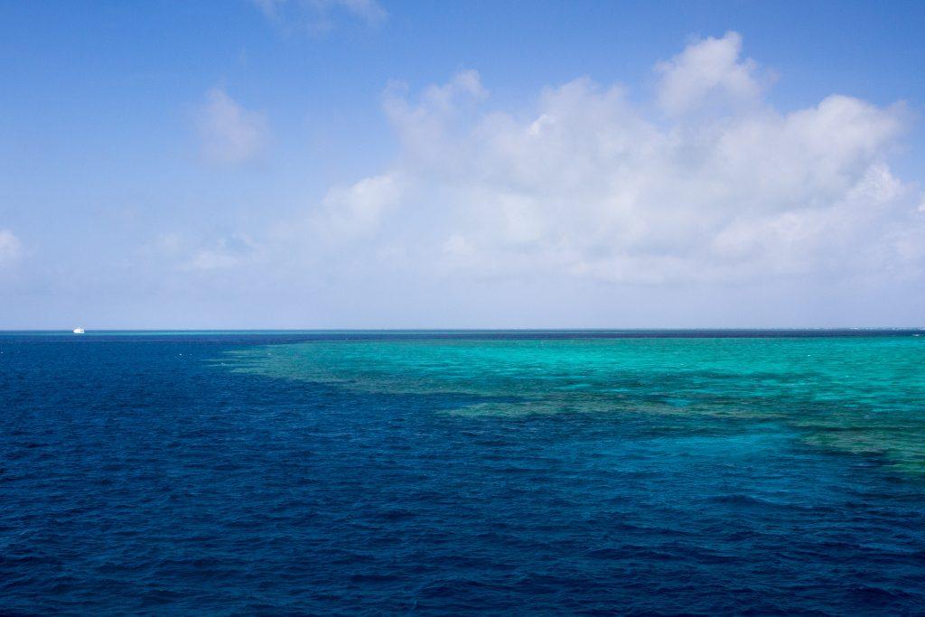 Australia for Kids: The Edge of the Reef