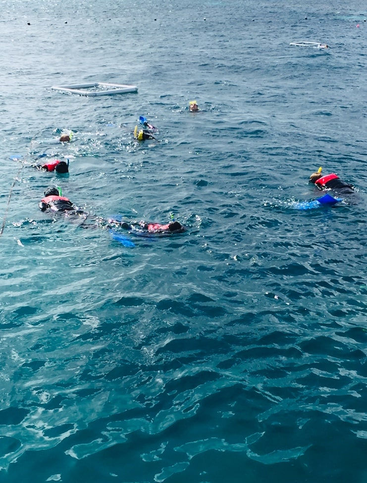 Australia for Kids: Snorkeling on the Reef