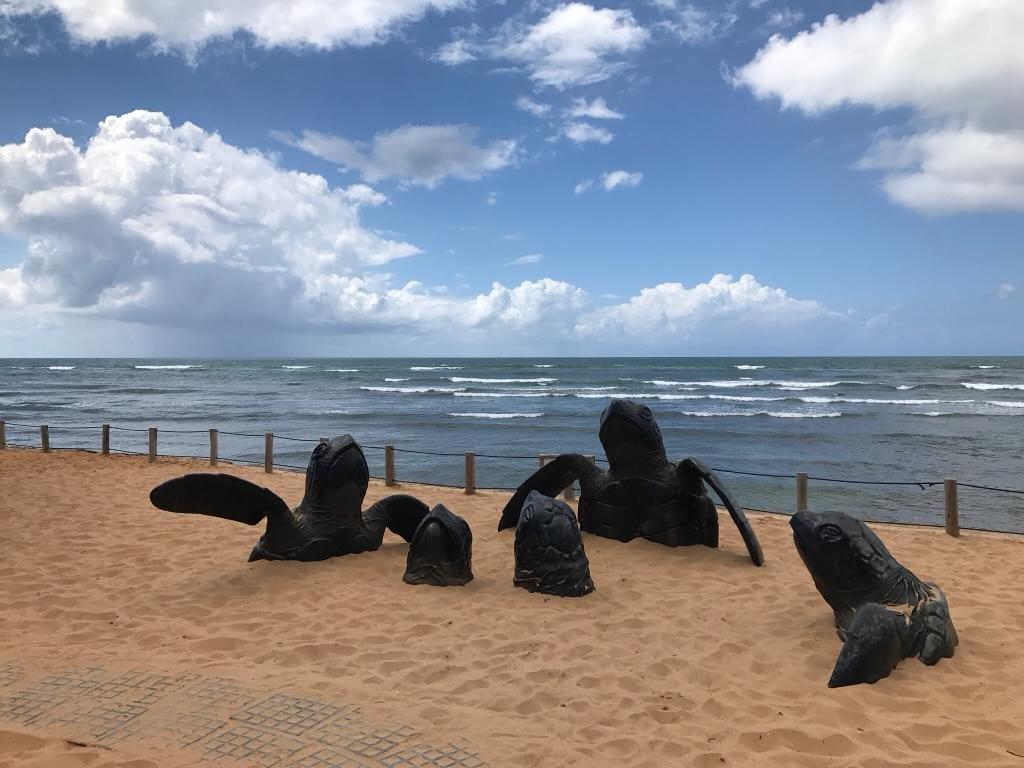 Brazil for Kids: Sculptures of turtles at Projeto Tamar