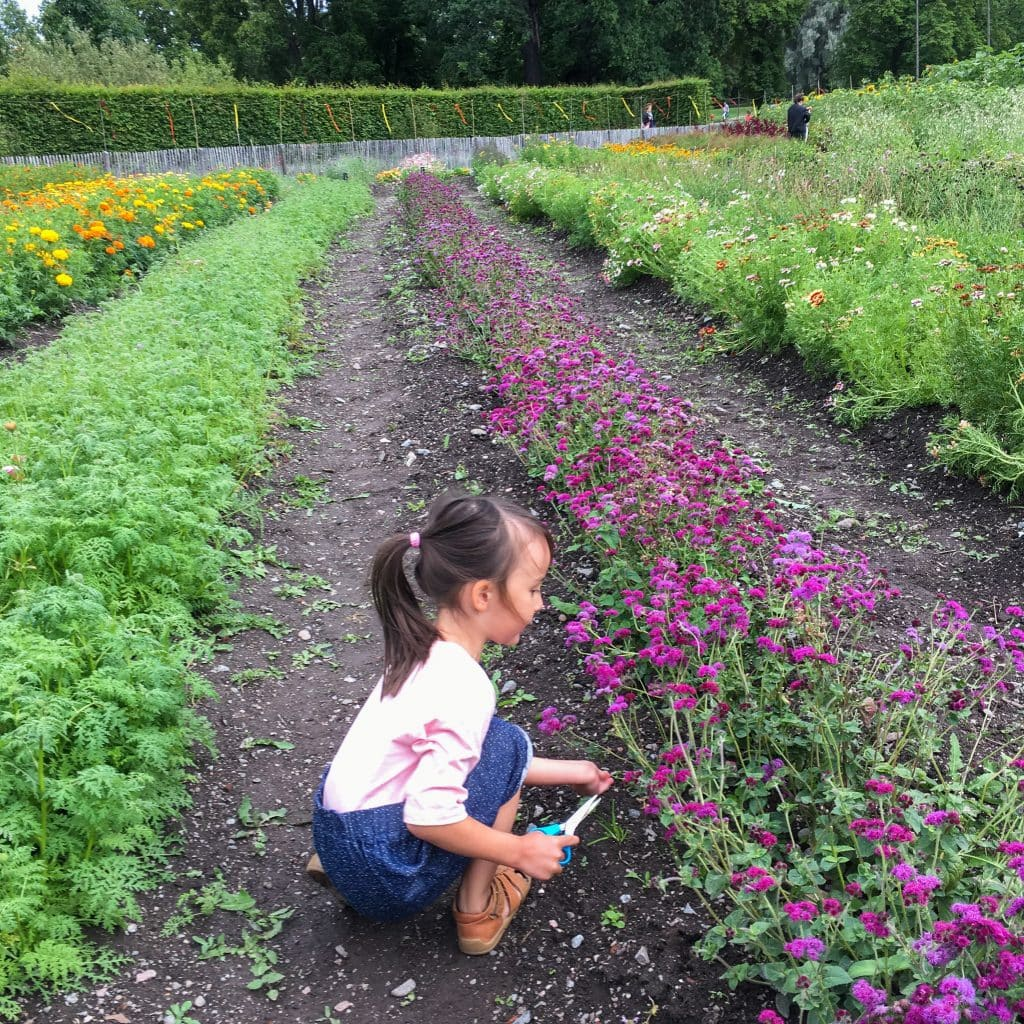 Things to do in Stockholm with kids: girl picking flowers